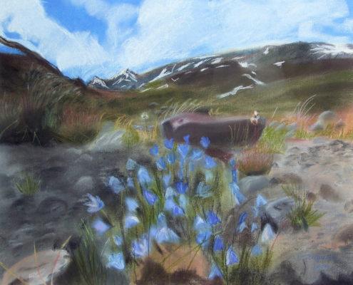 Inger-Lise Bergersen: Blåklokker i fjellheimen Pastell